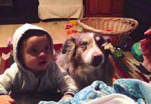 "Zamolila je bebu da kaže ""Mama"", a pas joj je odgovorio"