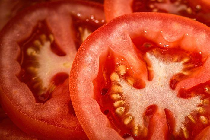 Rajčica ljekovita biljka