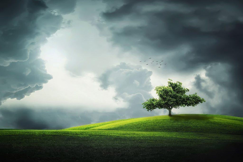 Gdje je uistinu bio smješten Rajski vrt?