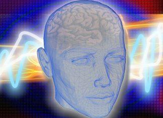 Ljudski mozak je programiran da vjeruje u Boga