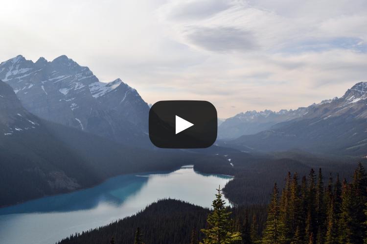 Ovaj video iznosi znanstvene detalje o stvaranju o kojima se u javnosti šuti