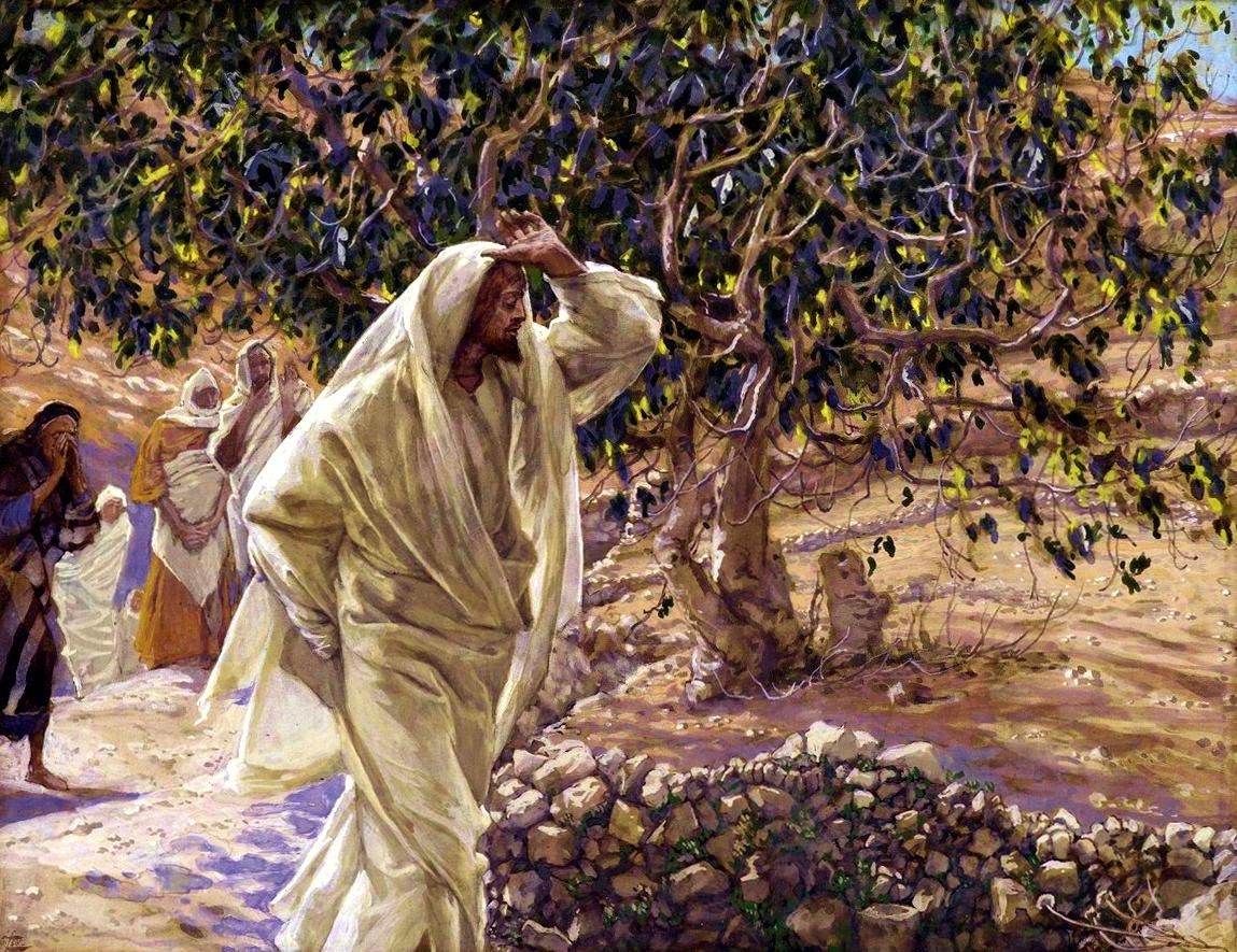 Zašto je Isus prokleo smokvino stablo