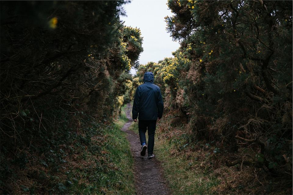 šetnja u prirodi