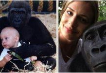 Djevojčica je odrasla s gorilama