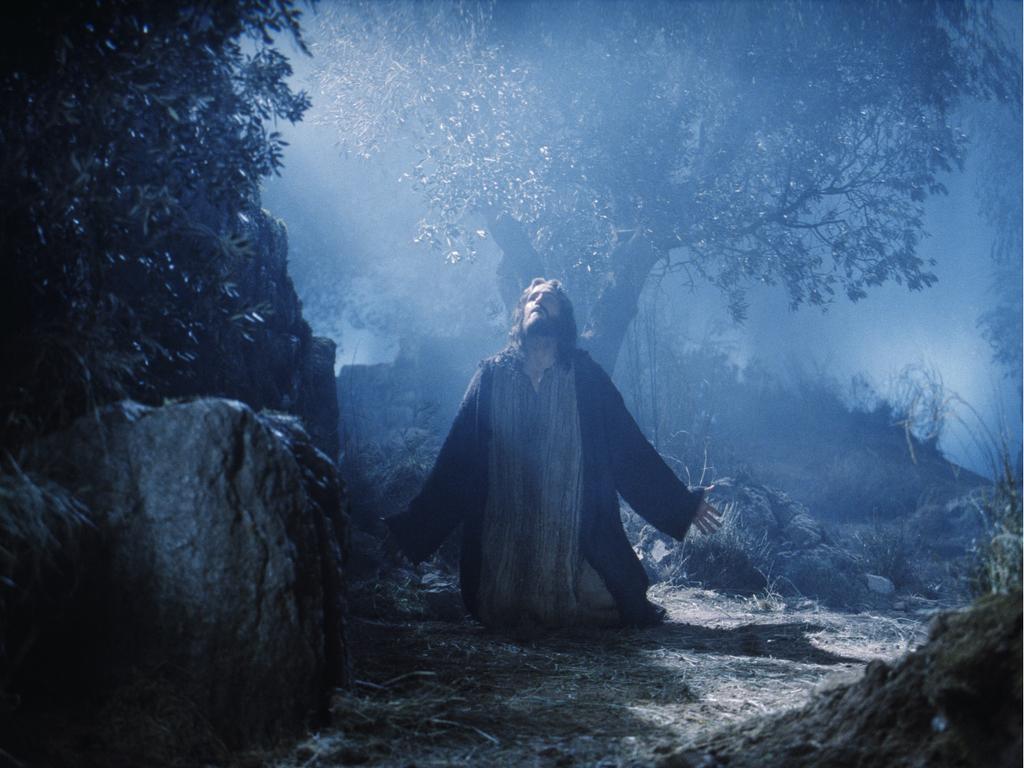 Kralj nad kraljevima, tuga nad tugama