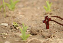 Bog svakome daje točno onakav križ kakav može nositi