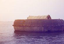 Noina arka