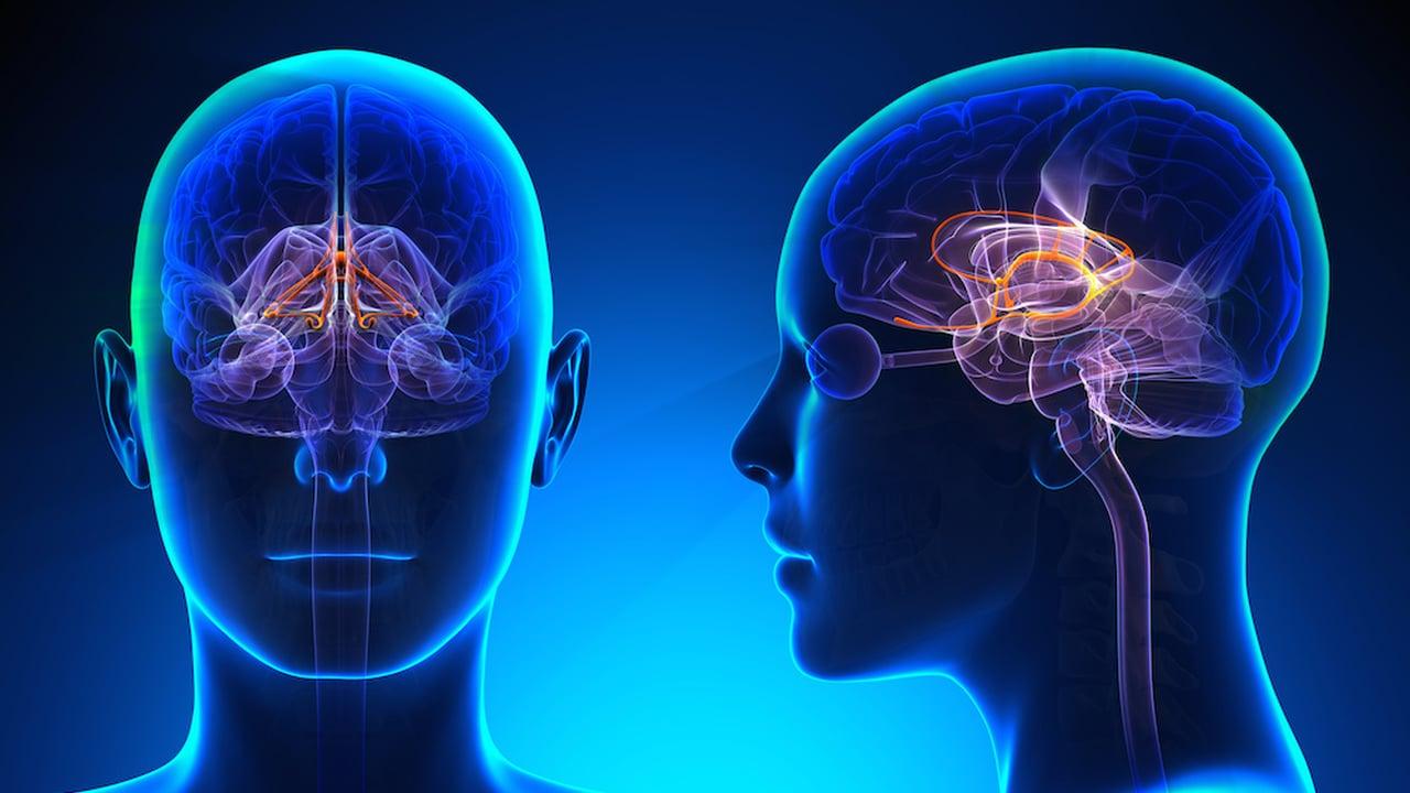 navike koje oštećuju mozak