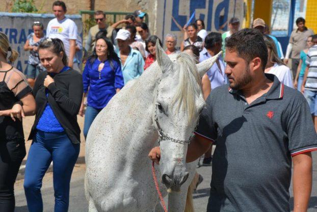 konj-sahrana-2