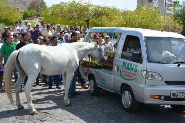 konj-sahrana-3