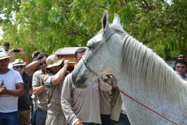 konj-sahrana-8