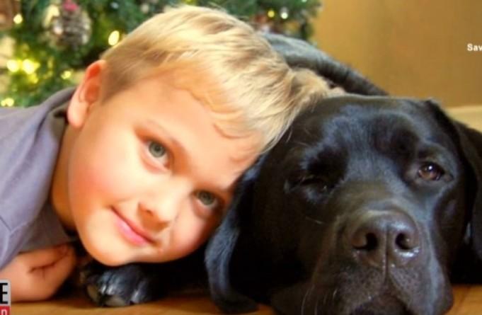 pas spašava život dječaku