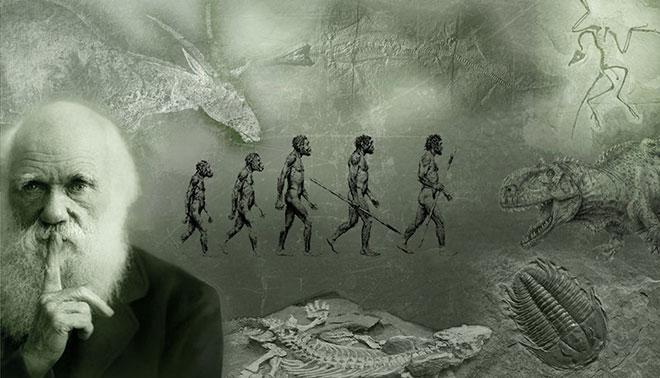 Charles Darwin teorija evolucije