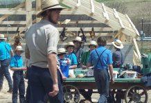 Amiši