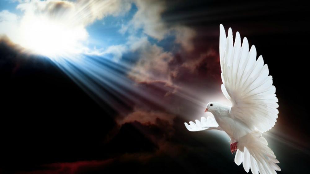 istina Duh Sveti