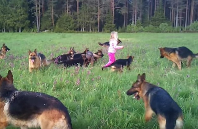 djevojčica 14 pasa