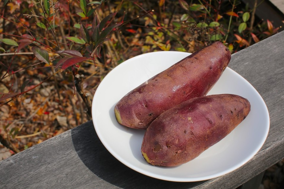 slatki krumpir batat