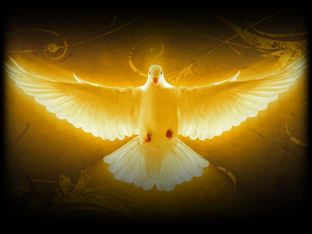 Čudesno djelo Duh Sveti želi učiniti u našim životima