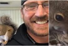 spasio vjevericu
