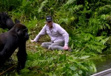 gorile žena