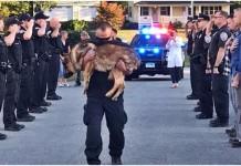 policajac ceremonija umirući pas