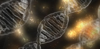 znanstvenik teorija evolucije