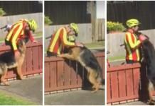 Poštar mazi psa
