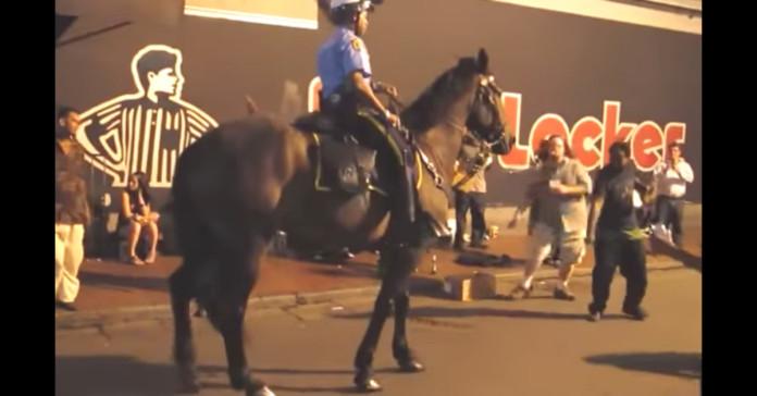 policajac konj