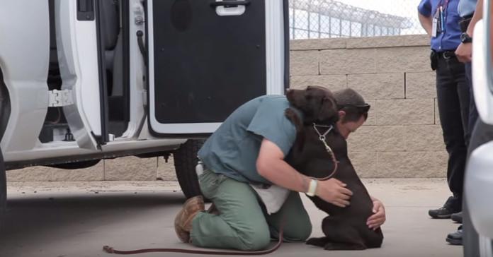 zatvorenik pas rastanak