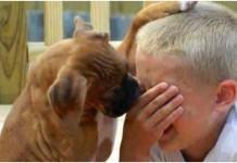 fotografije djeca psi