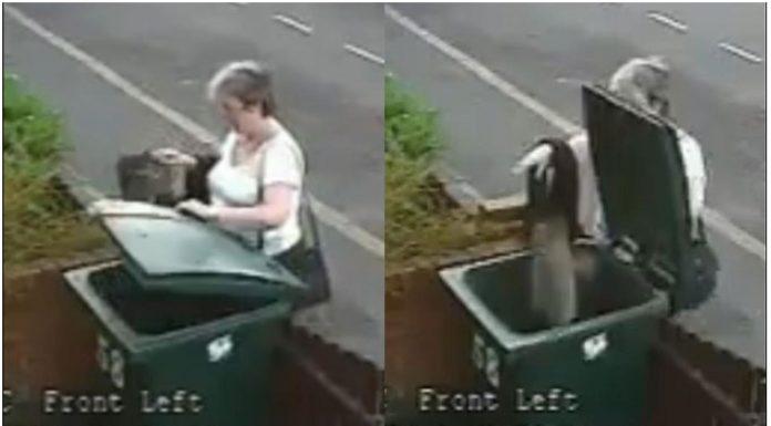 žena bacila mačku kanta za smeće