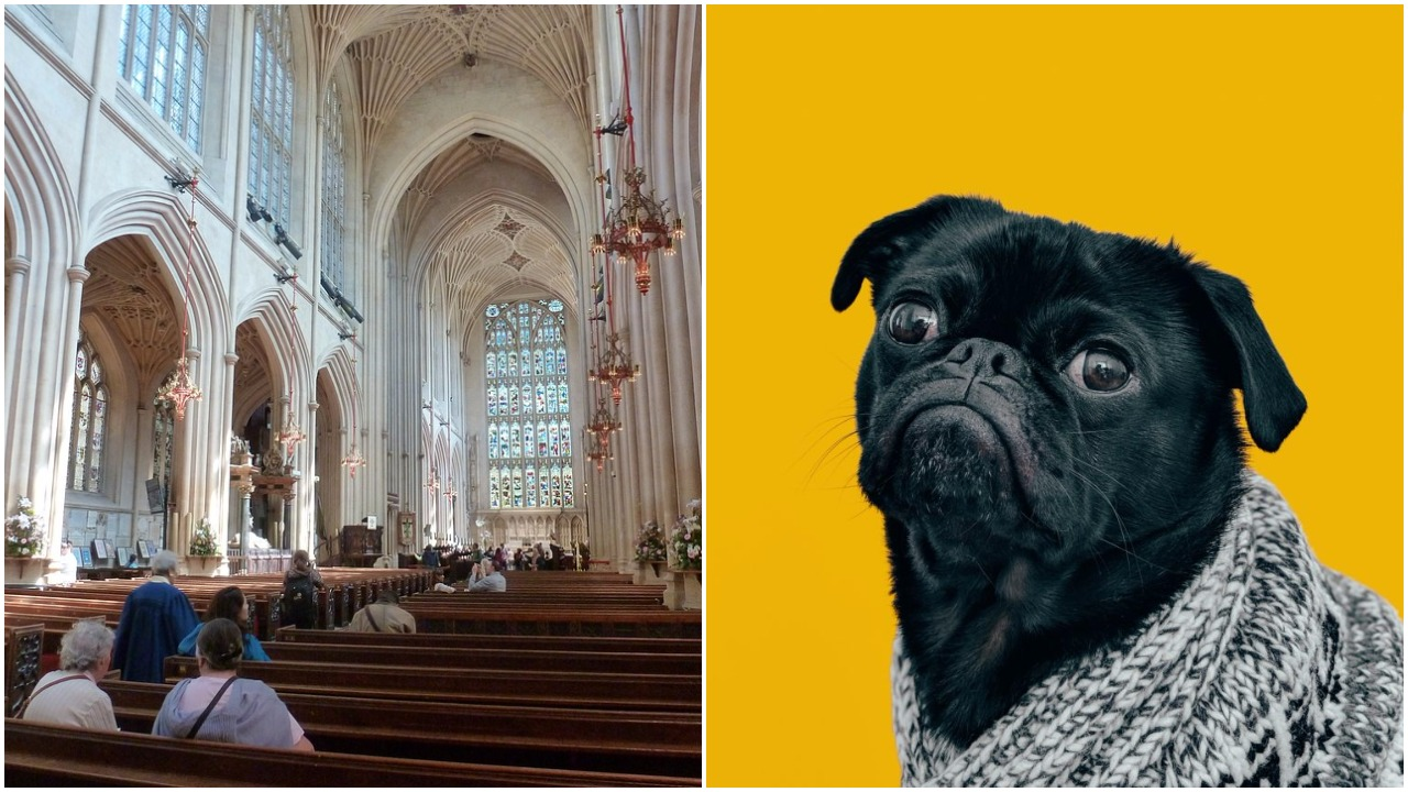 Crkva Engleske krštenje životinja