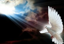 Posljedice grijeha protiv Duha Svetoga