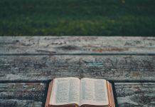 Samoopravdanje, proklinjanje i osveta u Psalmima