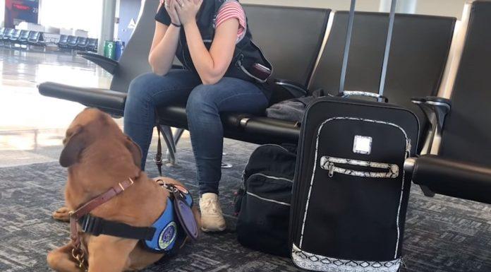 pas prepoznaje napade panike