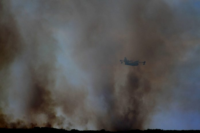 požar grčka izgubila djecu sina pismo