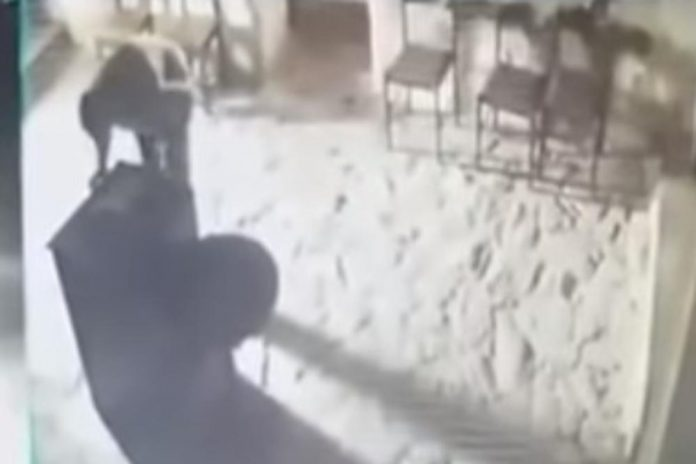 snimka pljačke zgrozila pravoslavce