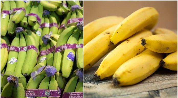 zelene zrele banane