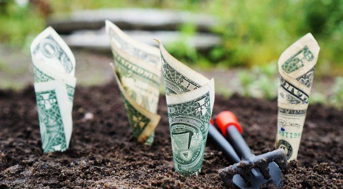 Najbolja financijska investicija ikad: Evo u što trebate uložiti svoj novac!