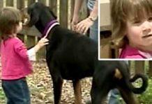 Doberman spasio djevojčicu od zmije otrovnice