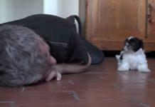 Čovjek je legao pored svog psića