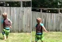 dječak se igra s psom iz susjedstva