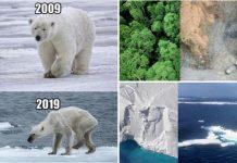 Koliko se Zemlja promijenila u 10 godina pod štetnim utjecajem klime?
