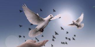Mnogi od nas su u neznanju o onome što imamo, sili Duha Svetoga koja je u nama
