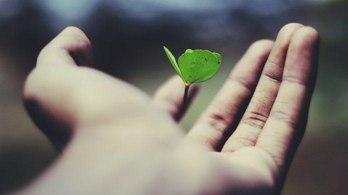 Kako Bog koristi bol da bi nam pomogao rasti?