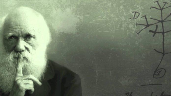 Britanci ne vjeruju u Darwinovu teoeriju evolucije