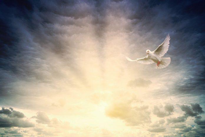 Jedina stvar Duh Sveti traži