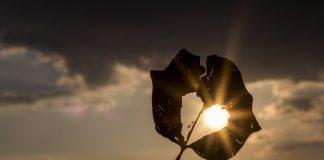 6 načina na koje Bog blagoslivlja slomljeno srce