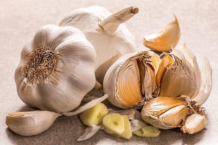 Može li češnjak uistinu smanjiti krvni tlak?
