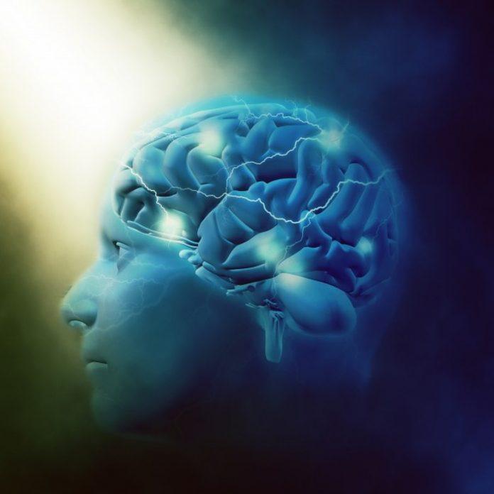 5 znakova po kojima se razlikuju inteligentni od načitanih